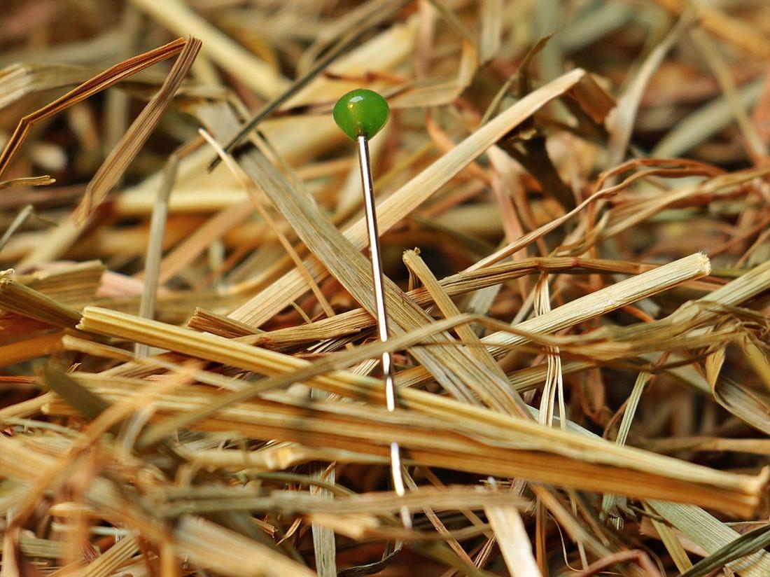 https://pixabay.com/en/needle-in-a-haystack-needle-haystack-1752846/